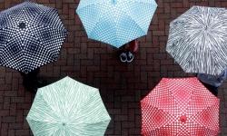 クーラ 長傘