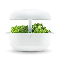 �ץ��ȥ��� / Plantui 6 Smart Garden��
