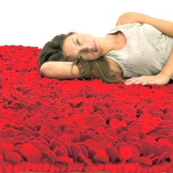 <センプレ> ラグマット170×240cm (Roses)